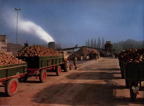 Zuckerfabrik Elsdorf
